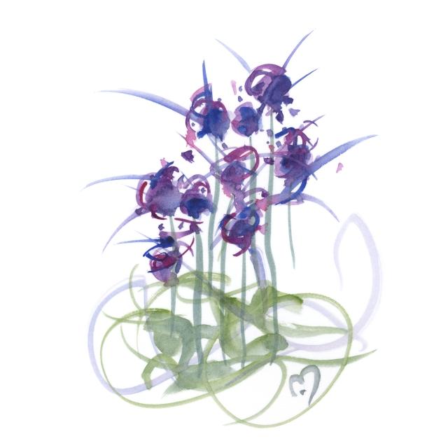 atom flowers #39©marina kanavaki