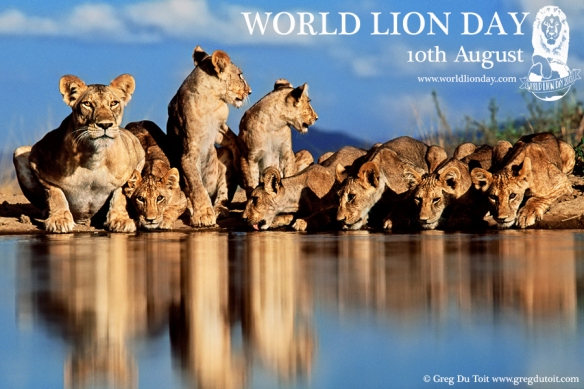 WORLD LION DAY 2013 Picture 019