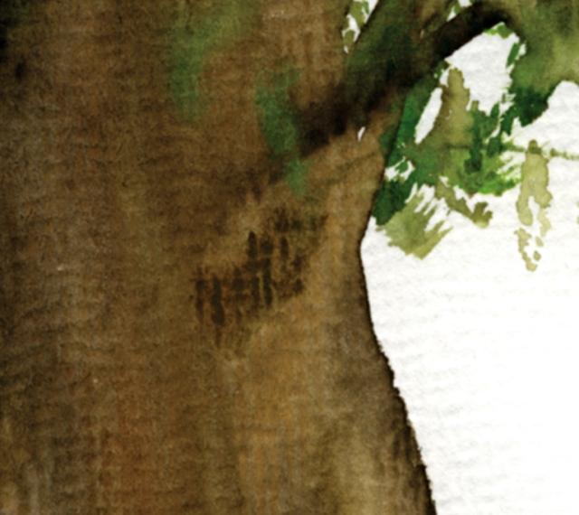 fortune tree#3 det2 ©Marina Kanavaki