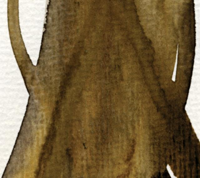 fortune tree#3 det3 ©Marina Kanavaki