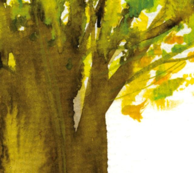 fortune tree#5 det2 ©Marina Kanavaki