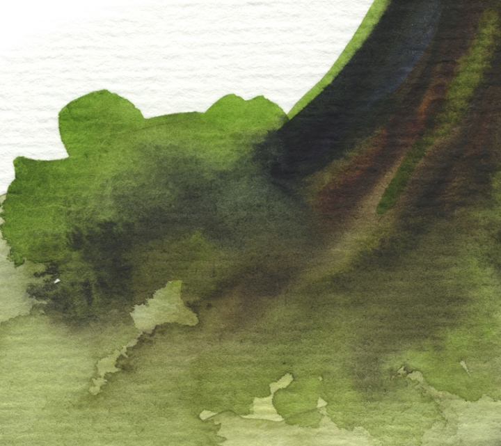 emerald tree det3 ©Marina Kanavaki