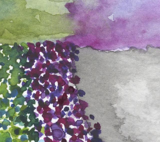 paths of color III det2 ©Marina Kanavaki