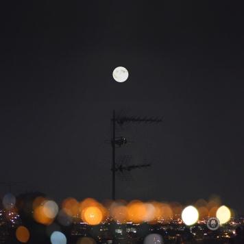 antenna set to the moon©