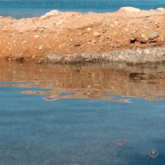 20170918_162400reflections2
