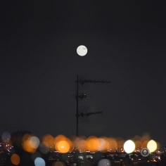 antenna set to the moon©