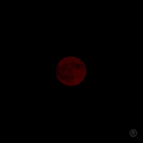 DSC_0024 (1)RedMoon-51-2-17
