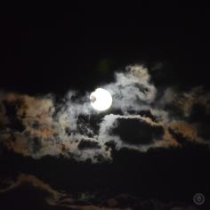 DSC_0037 (2)97,5%Moon07102017