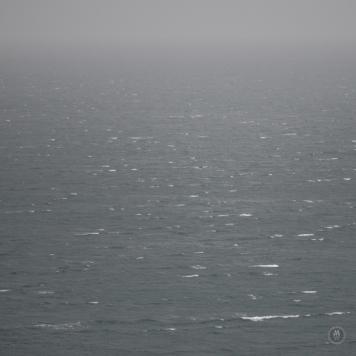 DSC_0141 (1)RainSea