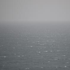 DSC_0142 (1)RainSea
