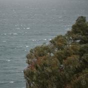 DSC_0146 (1)Rain