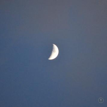 DSC_0247 (1)MoonriseSunset