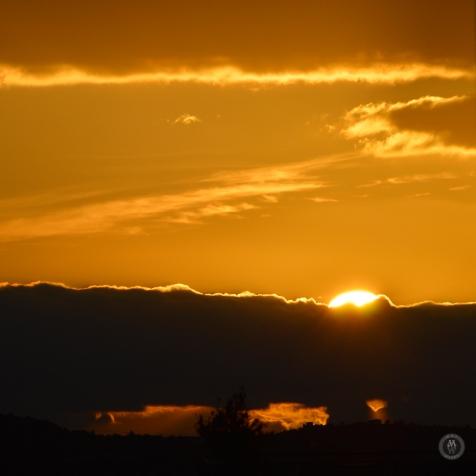 DSC_0323 (1)Sunrise1112017