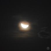 DSC_0516 (2)Moon11112017