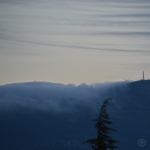 DSC_0638 (1)TreeMountainCloud
