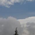 DSC_0681 (1)TreeRainClouds