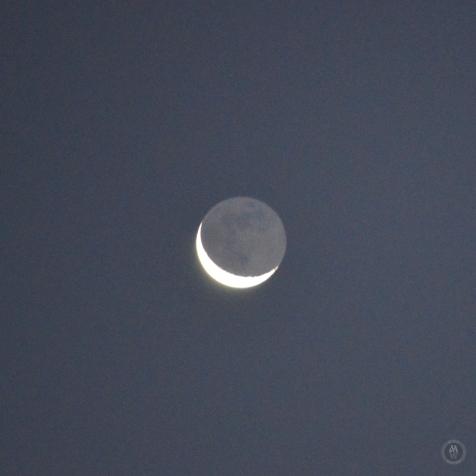 DSC_0973 (1)Moon15122017